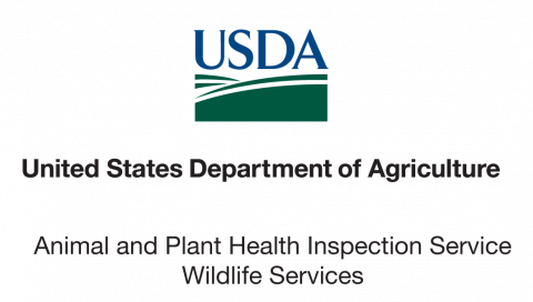 Apply Now for USDA Internships!   NC State Extension