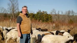 Dan Campeau with his flock of sheep