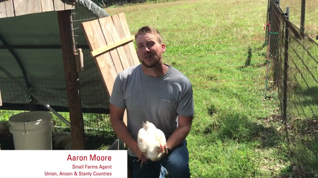 Still shot of Aaron Moore in a Pastured Poultry video