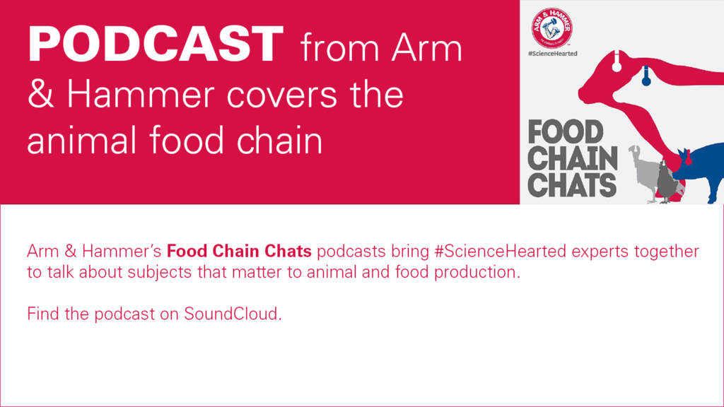 decorative banner with text announcing the Arm & Hammer podcast, all info repeated in post
