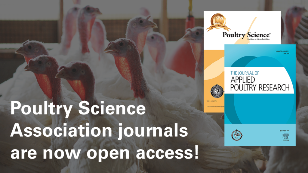 turkeys and journal covers (Poultry Science and The Journal of Applied Poultry Research)